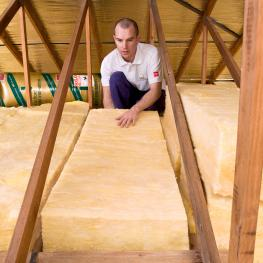 Buy Ceiling Insulation Batts for cheapest prices